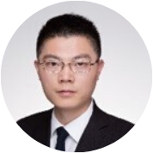 Gary Liu (Partner Transaction Advisory Services - Real Estate Transaction Support at Ernst & Young (China) Advisory Limited)